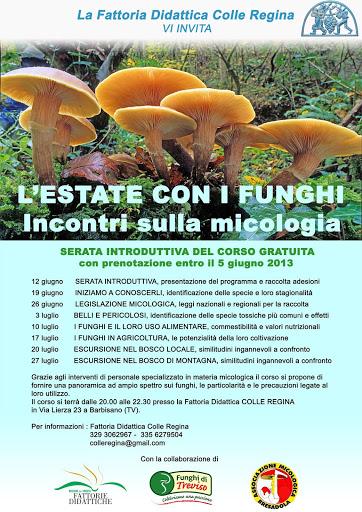 Estate con i funghi alla Fattoria Didattica Colle Regina